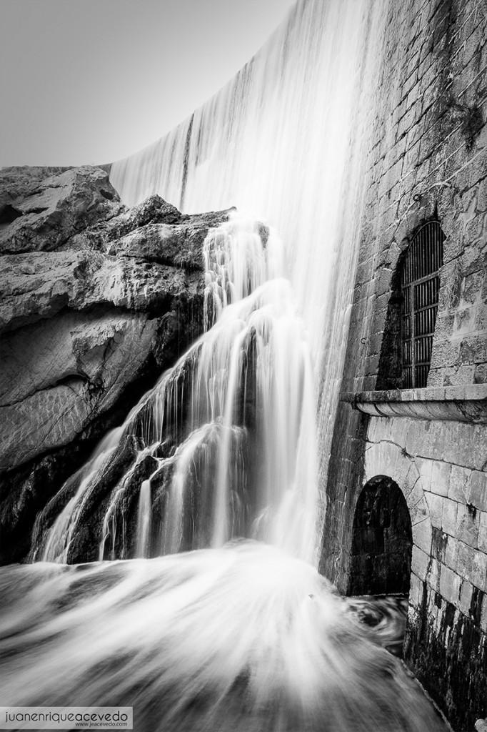 Fotografia Elche | Pantano